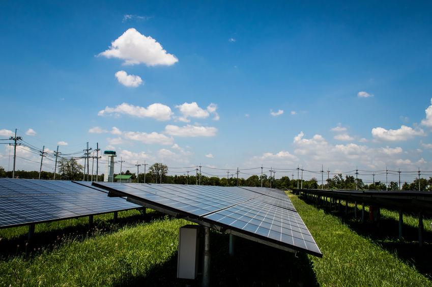 Agricultural solar farm