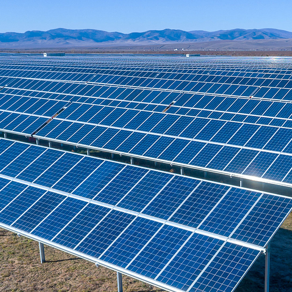 Commercial Solar Panels in Field