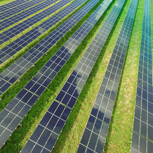 Solar Consulting Project Restoration